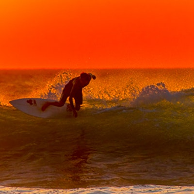 Langosta tamarindo beach walks 2822.jpg?ixlib=rails 1.1