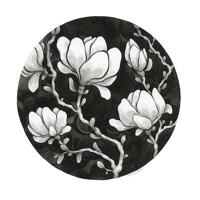 Kuguenko magnolias lowres.jpg?ixlib=rails 1.1