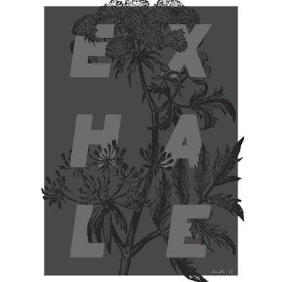 Exhale insta.png?ixlib=rails 1.1