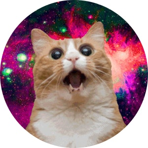 Space cat.png?ixlib=rails 1.1